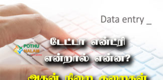 What is Data Entry in Tamil