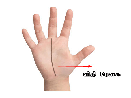 kairegai palangal tamil