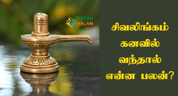 lingam kanavu palangal in tamil