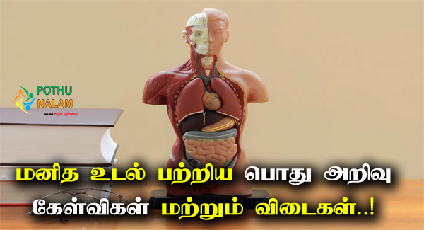 Human Body General Knowledge Questions in Tamil