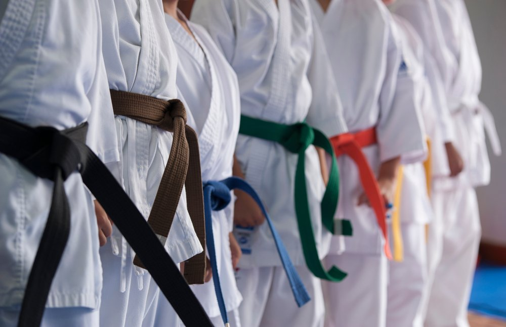 Karate Belt Colours Meaning