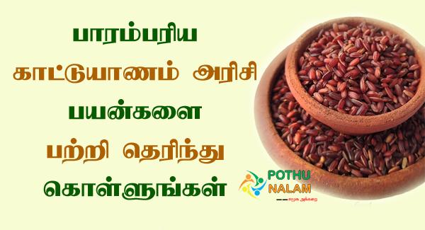 Kattuyanam Rice Benefits in Tamil