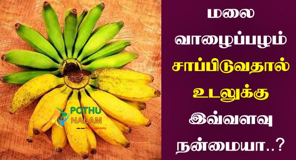 Malai Valaipalam Benefits in Tamil