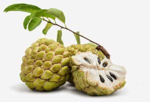 பழங்கள் fruits name in tamil