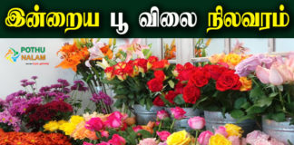 Today Flower Rate in Chennai