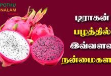 dragon fruit benefits in tamil