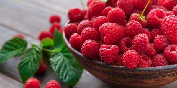 high fiber foods list lose weight in tamil