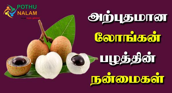 longan fruit in tamil