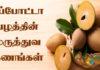 sapota benefits in tamil
