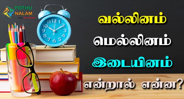 Vallinam Mellinam Idaiyinam in Tamil