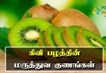 kiwi fruit benefits in tamil