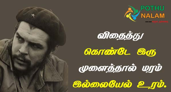 motivational quotes che guevara quotes in tamil