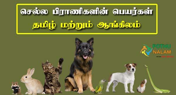 pets name in tamil
