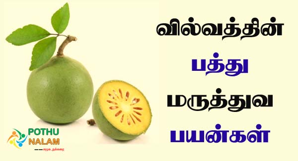 vilvam uses in tamil